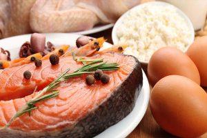 Yüksek Protein Diyeti